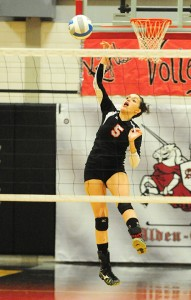Brittany Waters of Alden-Conger spikes the ball from the back row Monday against Glenville-Emmons. Waters earned a game-high 14 kills. — Micah Bader/Albert Lea Tribune