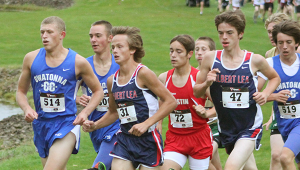 Jackson Goodell, third from left, and Caleb Troe of Albert Lea run Thursday at Owatonna's Brooktree Golf Course. The Albert Lea boys' and girls' teams both finished in the top five. — Lon Nelson/For the Albert Lea Tribune