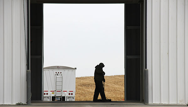 A Five Star Co-op employee sweeps grain into the dump pit Tuesday at the new $4.5 million grain elevator in Scarville, Iowa. Trucks can drive through, rather than having to back out after dumping. -- Tim Engstrom/Albert Lea Tribune
