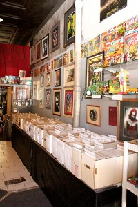 There are about 40,000 different comic books to choose from at the shop. -- Brandi Hagen/Albert Lea Tribune