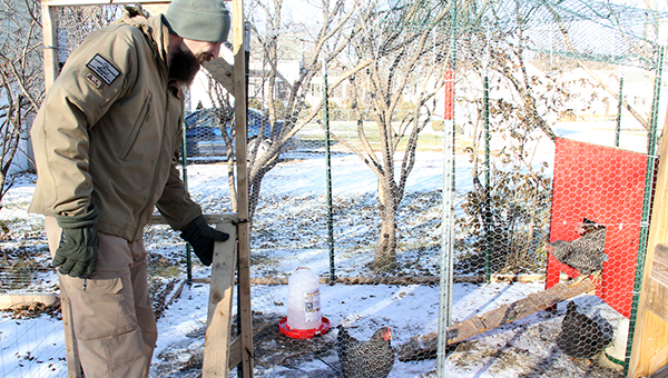 Leo Hendrick of Northwood opens the door to the chicken coop Friday behind his house. Hendrick is fighting a citation that says he is unlawfully keeping the animals.  --Sarah Stultz/Albert Lea Tribune