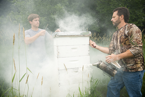 Dan Studier, right, keeps a smoker going while he and his son, Drew, take the cap off of one of their 12 hives. The smoker keeps the bees calmer so that they're less likely to sting. – Colleen Harrison/Albert Lea Tribune