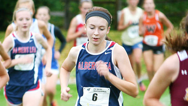 Haley Harms of the Albert Lea girls' cross country team runs Thursday at Brooktree Golf Course in Owatonna. Harms led the Tigers to a sixth-place finish out of 11 teams by taking 17th place out of 75 runners with a time of 16:01.4. — Bryce Gaudian/For the Albert Lea Tribune