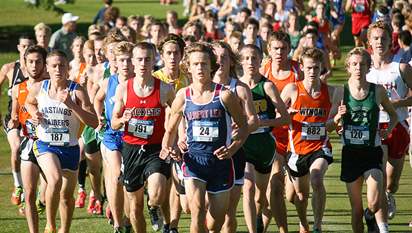 Jackson Goodell of Albert Lea runs Thursday at the Section 1AA cross country meet at Brooktree Golf Course in Owatonna. — Bryce Gaudian/For the Albert Lea Tribune