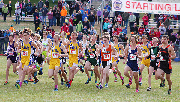 Jackson Goodell of Albert Lea takes off at the start of the Class AA state cross country meet Saturday at St. Olaf College in Northfield. — Lon Nelson/For the Albert Lea Tribune