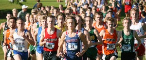 Jackson Goodell of Albert Lea runs Oct. 23 at the Section 1AA cross country meet at Brooktree Golf Course in Owatonna. Goodell qualified for the state meet with a second-place finish and a time of 16:09.9. – Bryce Gaudian/for the Albert Lea Tribune