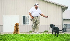 Rick McConico goes through fetching technigues with Bond, left, and Magnum at Old Oak Kennels, west of Blooming Prairie. - Eric Johnson/Albert Lea Tribune