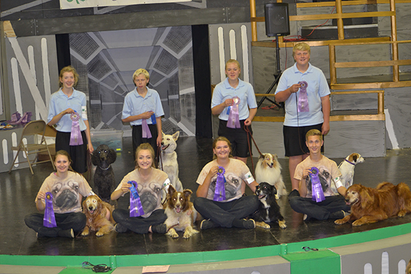 Both the champions and reserve champions of the Four Dog Team category at the Minnesota State Fair were from Freeborn County. Grand champion winners Emma Iverson, Betsy Wagner, Sara Kabrud and Noah Iverson display their ribbons while sitting with their canines as reserve champions Mariah Posthumus, Sam Louters, Maddie Schei and Louis Wagner stand with theirs in the back row. A four Dog Team is a class where you have teams of four kids and four dogs showing together doing the same command at the exact same time. There were 12 teams from all over Minnesota competing against each other in this class. - Provided