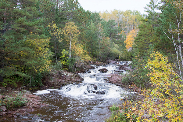 Roger Panzer took this photo of  Amity Creek by East Skyline Parkway in Duluth last Monday. The leaves are just starting to change color. The area had a lot of rain lately and streams have a lot of water flowing. To enter the weekly photo contest, submit up to two photos with captions that you took by Thursday each week. Send them to colleen.harrison@albertleatribune.com, mail them in or drop off a print at the Tribune office. The winner is printed in the Albert Lea Tribune and AlbertLeaTribune.com each Sunday. If you have questions, call Colleen Harrison at 379-3436. —  Provided