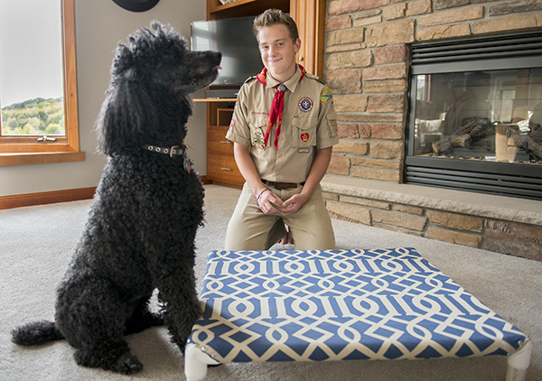 Colin Laurie, pictured with one of his family's dogs, Sophie, recently assembled and donated 20 dog beds to the Humane Society of Freeborn County as a part of his Eagle Scout service project. - Colleen Harrison/Albert Lea Tribune