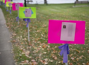 The Freeborn County Crime Victims Crisis Center put together signs with the faces and stories of victims murdered during domestic violence disputes to line the walkways of New Denmark Park during a community candlelight vigil Thursday. - Colleen Harrison/Albert Lea Tribune