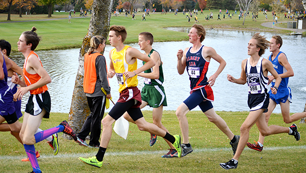 Albert Lea's Jay Skaar, third from right, runs Tuesday at the Big Nine Conference meet at Brooktree Golf Course in Owatonna. Skaar was the third Tigers runner to cross the finish line. He completed the course in 17:25.4 to take 23rd place out of 83 runners. — Lon Nelson/For the Albert Lea Tribune
