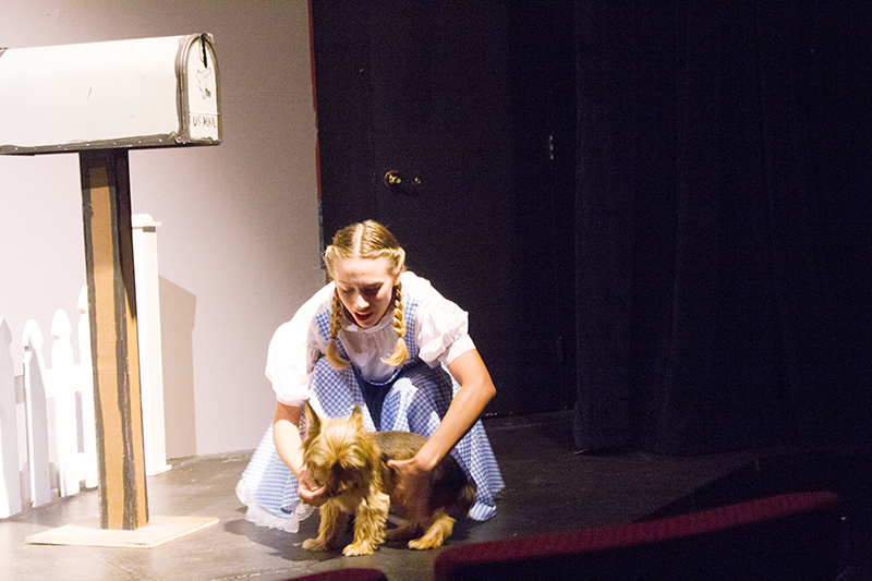 "Kendall Ward and Toto — played by Henry the dog — rehearse for performances of ""The Wizard of Oz."" - Sam Wilmes/Albert Lea Tribune"
