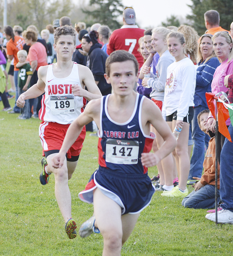 Albert Lea's Leo Olveda nears the finish line at the Austin cross country meet Tuesday afternoon at Meadow Green Golf Course in Austin. Olveda came in eighth place.
